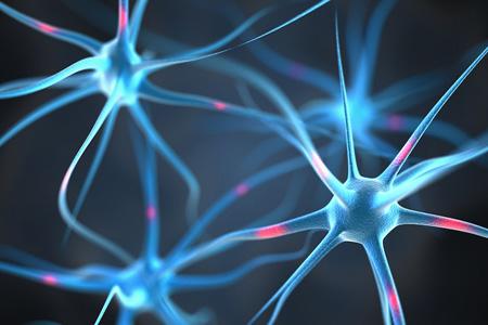 آیا مغزهای بزرگ باهوش ترند؟