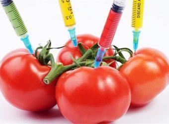 فواید و مضرات مواد غذایی اصلاح شده برای بدن